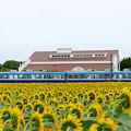 Photos: 銚子電鉄 犬吠駅