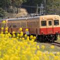 Photos: 小湊鉄道 月崎駅