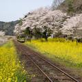 Photos: 小湊鉄道 上総大久保駅