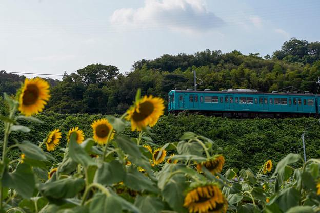 和歌山線 隅田駅~大和二見駅