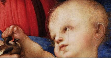 ラファエロひわの聖母4