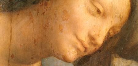 ダヴィンチ聖アンナと聖母子9