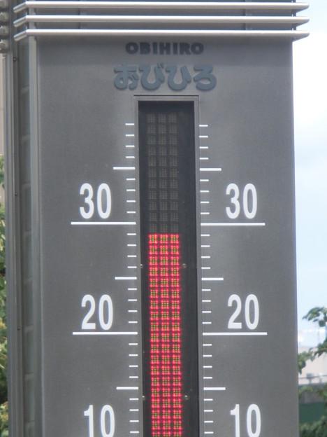 写真: 暑い!