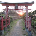 Photos: 鉢形城(鉢形城公園。埼玉県寄居町)