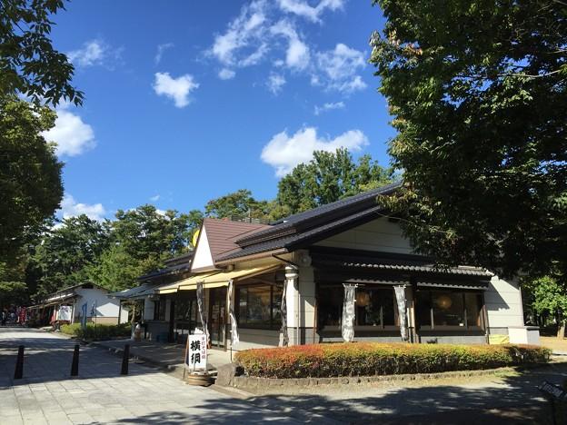 手打そば処 横綱(長野市)