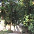 長谷寺(長野市)参道
