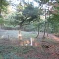Photos: 塩崎城(長野市篠ノ井)土塁? 上より一郭