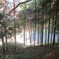 笹洞城(室賀城。上田市)神社ルート