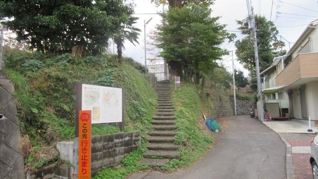 小田原古城 本曲輪北堀(神奈川県)