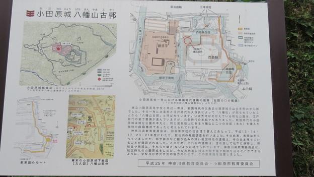 小田原古城 本曲輪(神奈川県)