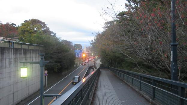 小田原城 堀跡(神奈川県)