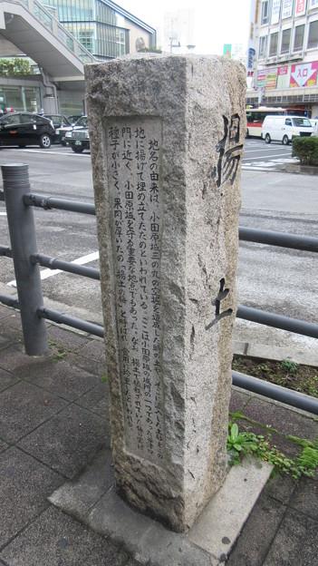 小田原城 揚土(神奈川県)