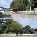 Photos: 小田原古城 土塁跡(神奈川県)