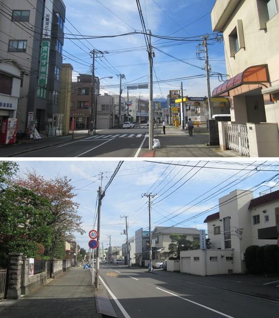 小田原城 花ノ木(神奈川県)