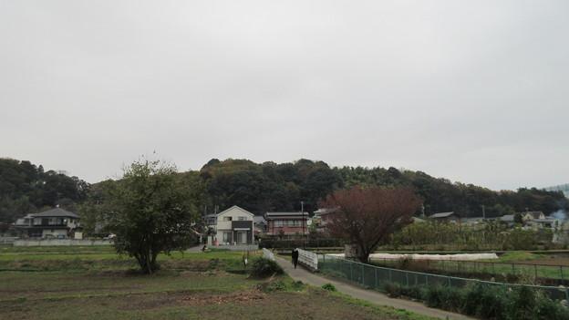 小山田神社(町田市)