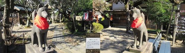 三囲稲荷神社(向島2丁目)神狐