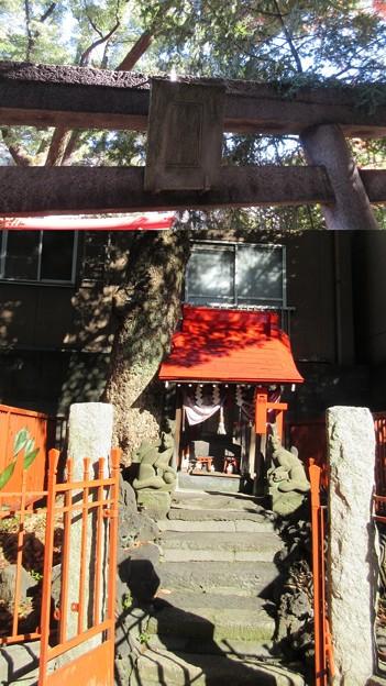 三囲稲荷神社(向島2丁目)白狐祠