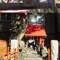 Photos: 三囲稲荷神社(向島2丁目)白狐祠
