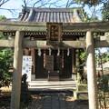 Photos: 三囲稲荷神社(向島2丁目)大國神・恵比壽神