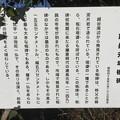 建長期 板碑(越谷市)