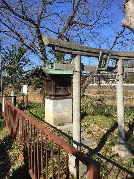 稲荷神社(板碑脇。越谷市)