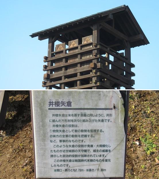 逆井城 南西井楼矢倉(茨城県坂東市営 逆井城跡公園)
