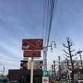 ブラウン(春日部市)