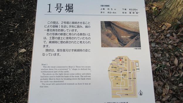 飛山城(宇都宮市営 飛山城史跡公園)1号堀