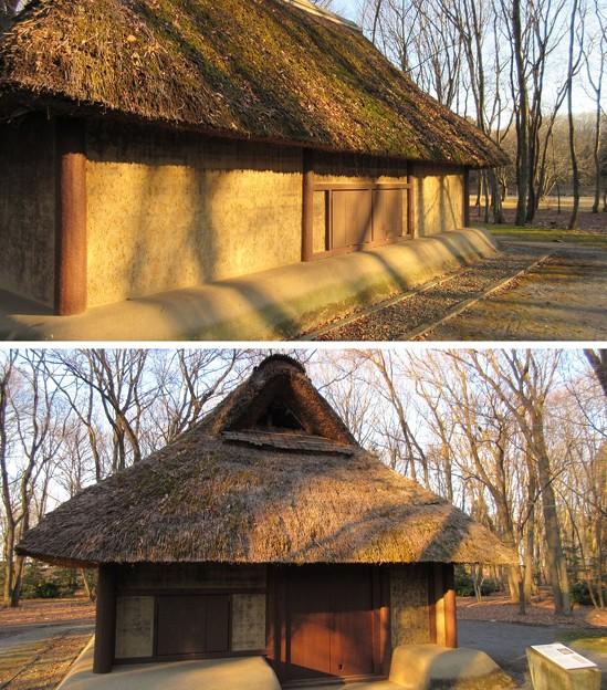 飛山城(宇都宮市営 飛山城史跡公園)古代竪穴建物