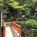 貴布禰総本宮 貴船神社(左京区)鞍馬寺西門