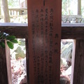 Photos: 鞍馬寺(左京区)奥の院 魔王殿