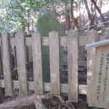 鞍馬寺(左京区)背比べ石