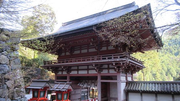 鞍馬寺(左京区)仁王門