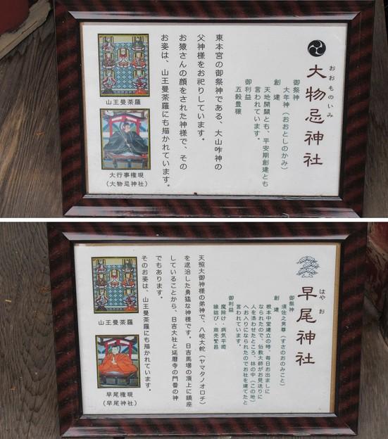 日吉大社(大津市)大物忌神社(早尾神社遷移中)