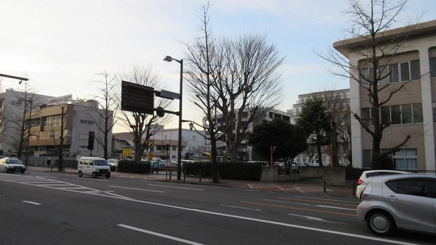 Photos: 高崎城(和田城。高崎市)梅木門