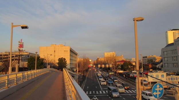 Photos: 高崎城(和田城。高崎市)本城