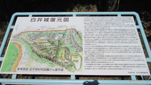 白井城(渋川市)本丸