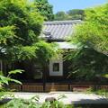 Photos: 長寿寺(鎌倉市)