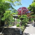 Photos: 海蔵寺(鎌倉市)