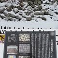 Photos: 富山城(市営富山城址公園)鉄門