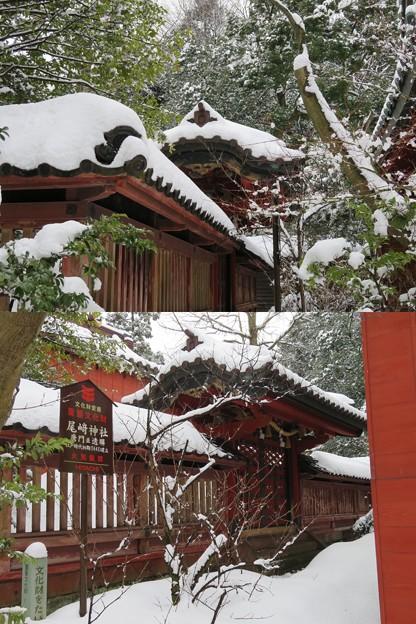 尾崎神社(金沢市)透塀 ・中門(平唐門)