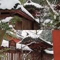 Photos: 尾崎神社(金沢市)透塀 ・中門(平唐門)