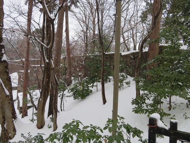金沢城(石川県営 金沢城公園)二の丸石垣