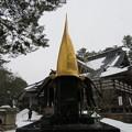 Photos: 尾山神社(金沢市)利家公金鯰尾兜