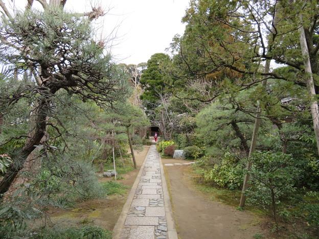 常楽寺(鎌倉市)参道