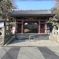 Photos: 龍口寺(藤沢市)仁王門