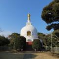 Photos: 龍口寺(藤沢市)仏舎利塔