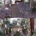 Photos: 高野神社/飯櫃城(芝山町)