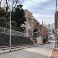 写真: 18.03.26.豊島区高田