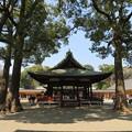 Photos: 氷川神社(大宮区)舞殿